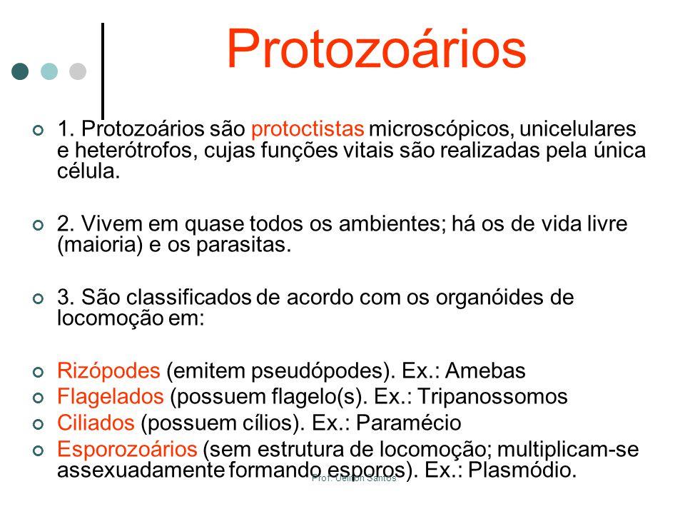 Protozoários 1. Protozoários são protoctistas microscópicos, unicelulares e heterótrofos, cujas funções vitais são realizadas pela única célula. 2. Vi
