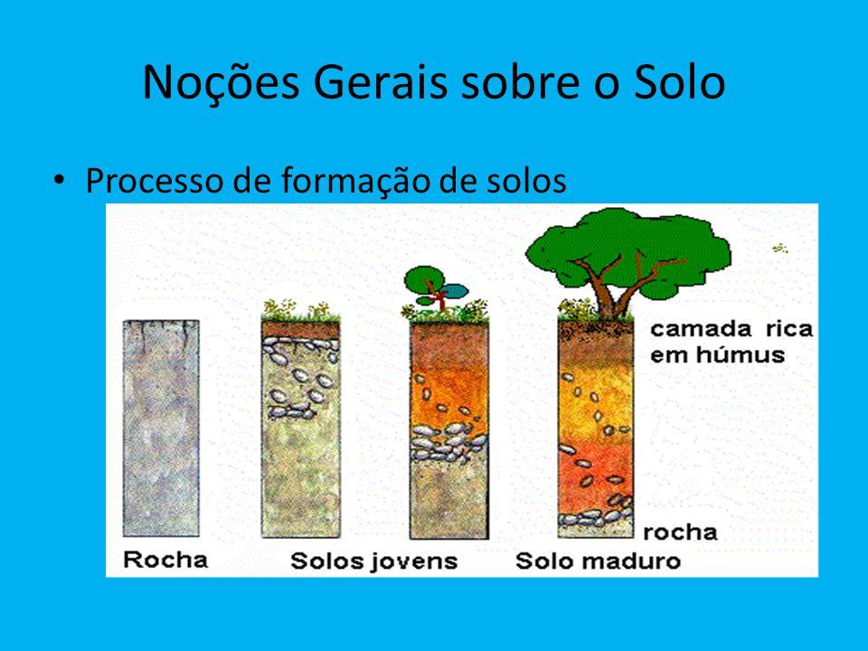 Noções Gerais sobre o Solo Processo de formação de solos