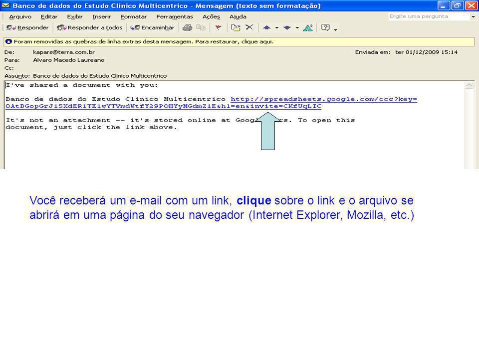 Você receberá um e-mail com um link, clique sobre o link e o arquivo se abrirá em uma página do seu navegador (Internet Explorer, Mozilla, etc.)
