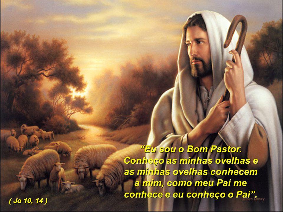 """10 """"Eu sou o Bom Pastor. Conheço as minhas ovelhas e as minhas ovelhas conhecem a mim, como meu Pai me conhece e eu conheço o Pai"""". ( Jo 10, 14 )"""