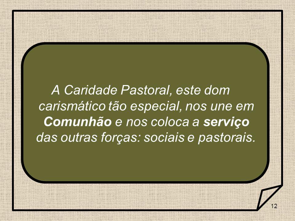 12 A Caridade Pastoral, este dom carismático tão especial, nos une em Comunhão e nos coloca a serviço das outras forças: sociais e pastorais.
