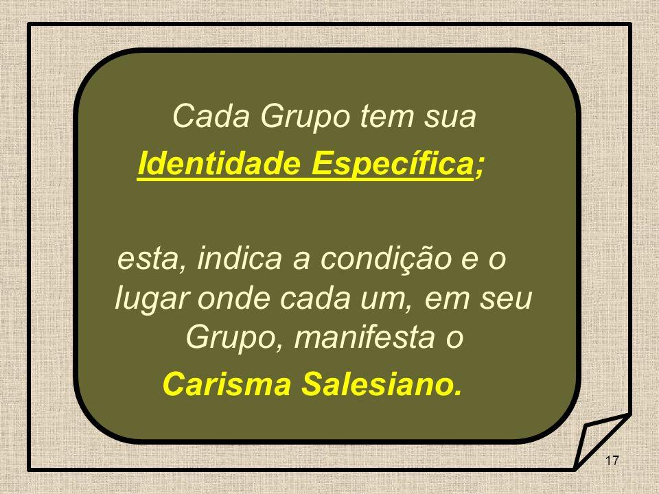 17 Cada Grupo tem sua Identidade Específica; esta, indica a condição e o lugar onde cada um, em seu Grupo, manifesta o Carisma Salesiano.