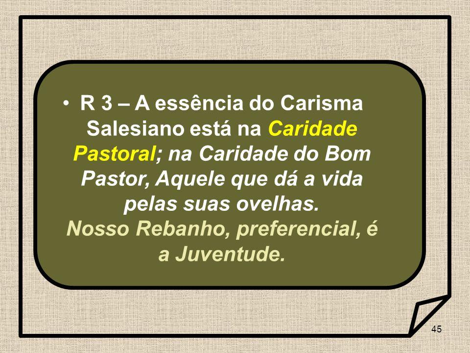 45 R 3 – A essência do Carisma Salesiano está na Caridade Pastoral; na Caridade do Bom Pastor, Aquele que dá a vida pelas suas ovelhas. Nosso Rebanho,