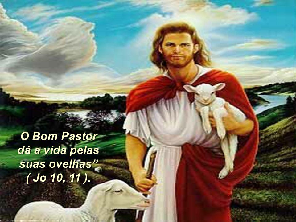 """9 O Bom Pastor dá a vida pelas suas ovelhas"""" ( Jo 10, 11 )."""