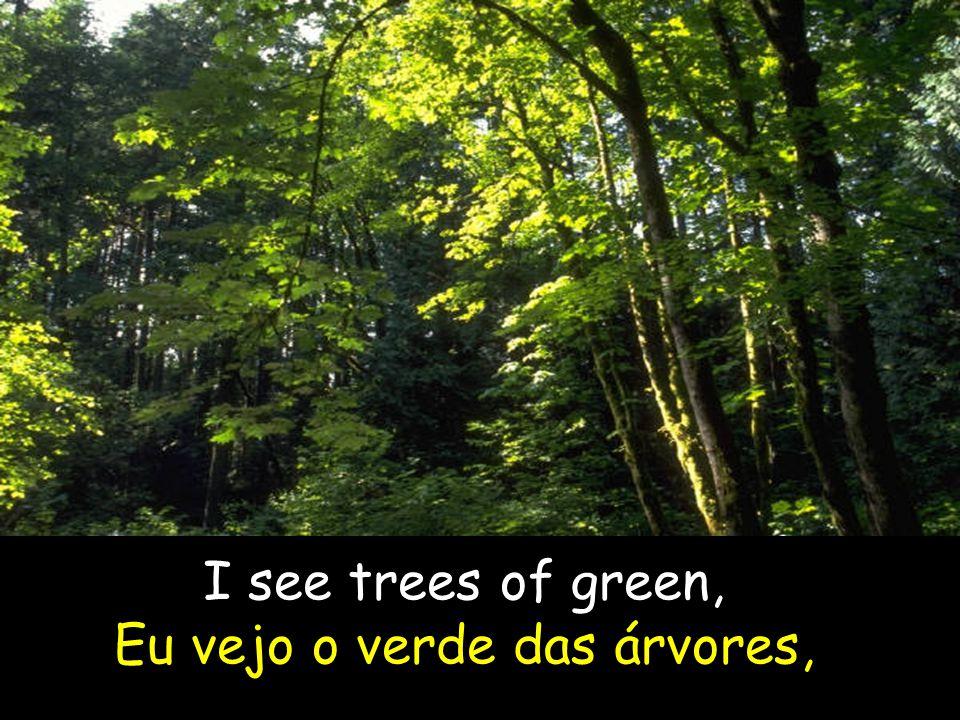 I see trees of green, Eu vejo o verde das árvores,