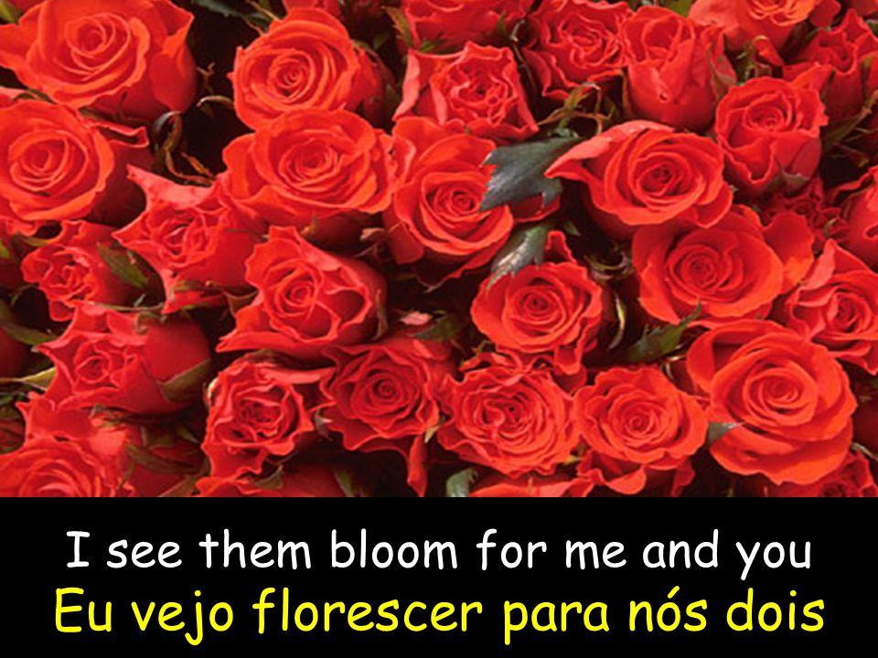 I see them bloom for me and you Eu vejo florescer para nós dois