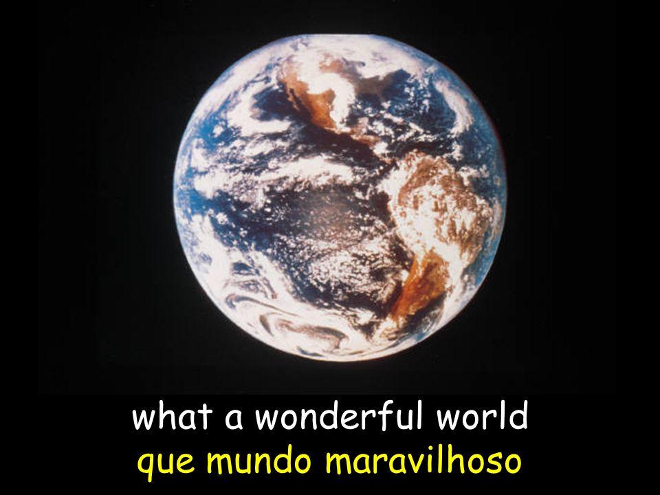 what a wonderful world que mundo maravilhoso