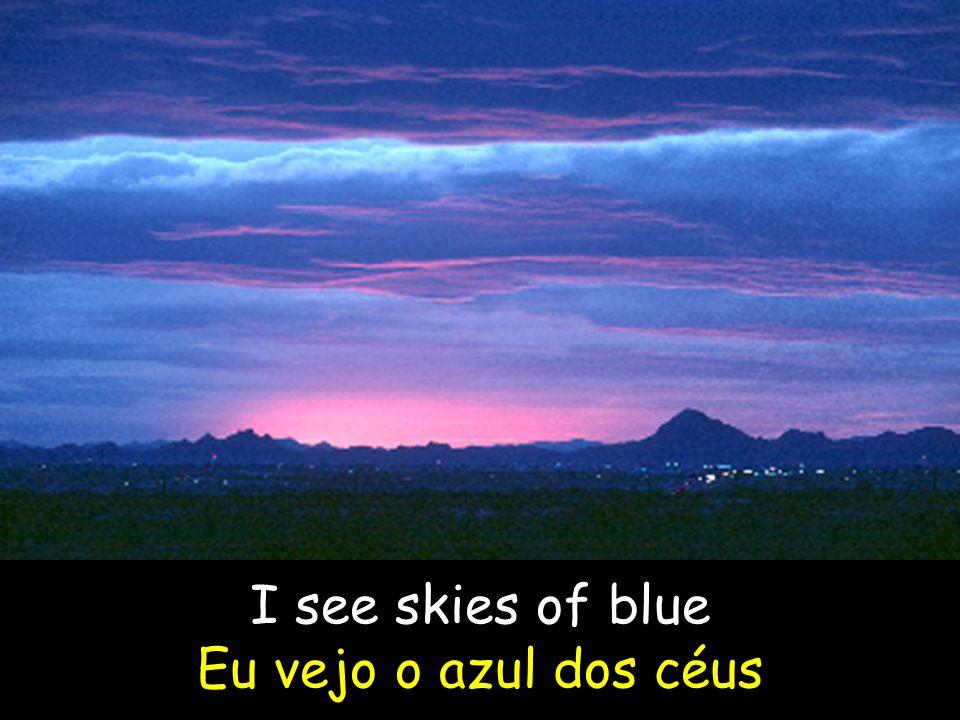 I see skies of blue Eu vejo o azul dos céus