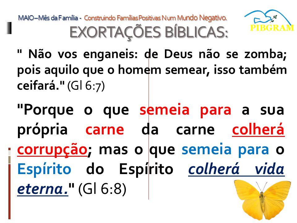 EXORTAÇÕES BÍBLICAS: Não vos enganeis: de Deus não se zomba; pois aquilo que o homem semear, isso também ceifará. (Gl 6:7) PIBGRAM MAIO – Mês da F amília - Construindo Famílias Positivas N um Mu ndo Negativo.