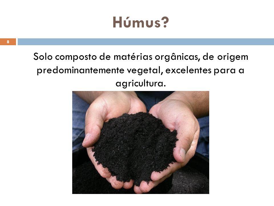 Húmus? Solo composto de matérias orgânicas, de origem predominantemente vegetal, excelentes para a agricultura. 8