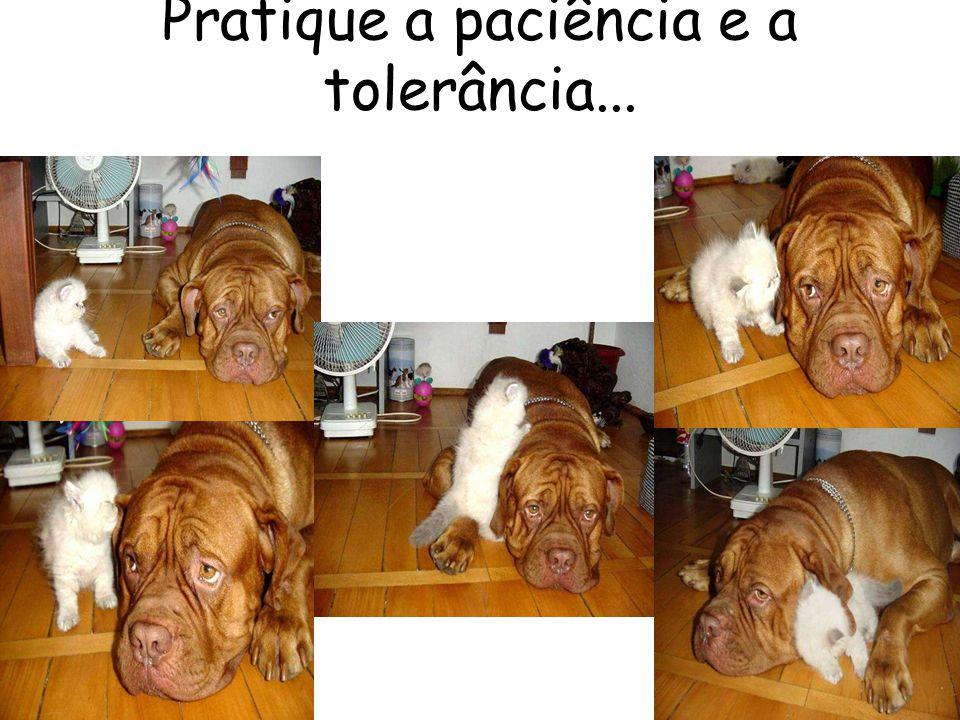Pratique a paciência e a tolerância...