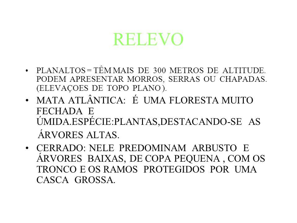 RELEVO PLANALTOS = TÊM MAIS DE 300 METROS DE ALTITUDE.