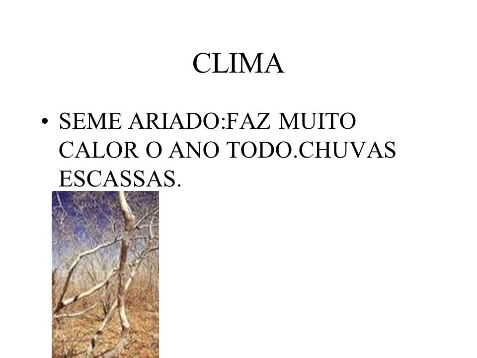 CLIMA SEME ARIADO:FAZ MUITO CALOR O ANO TODO.CHUVAS ESCASSAS.