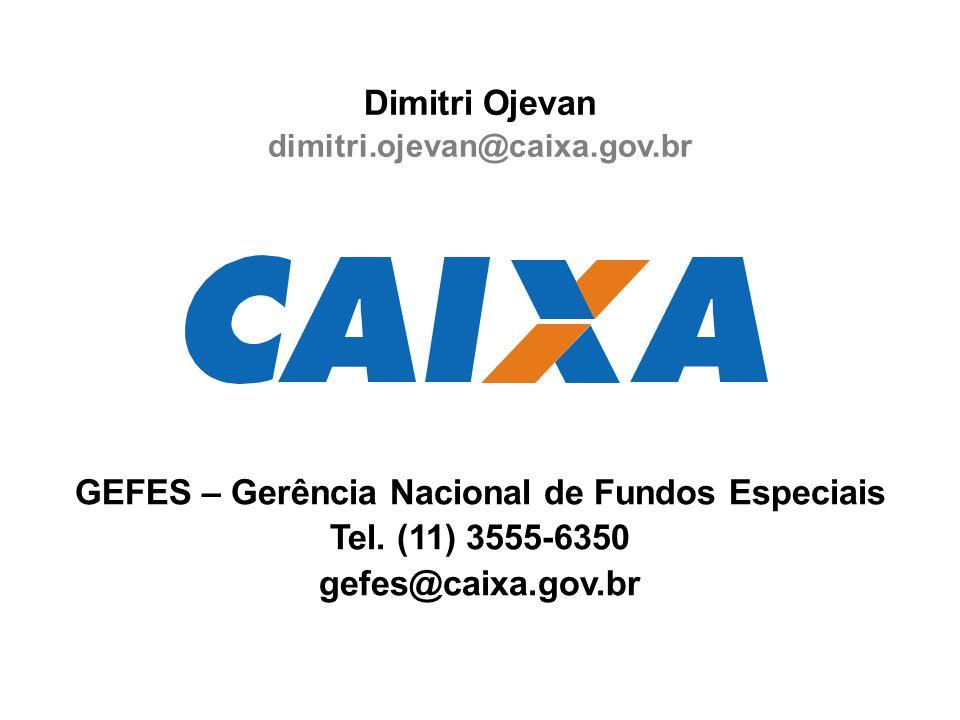 Dimitri Ojevan dimitri.ojevan@caixa.gov.br GEFES – Gerência Nacional de Fundos Especiais Tel.