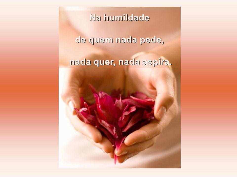 Aprendendo a amar, a orar, dando graças.