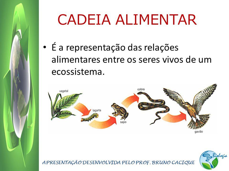 CADEIA ALIMENTAR É a representação das relações alimentares entre os seres vivos de um ecossistema. APRESENTAÇÃO DESENVOLVIDA PELO PROF. BRUNO CACIQUE