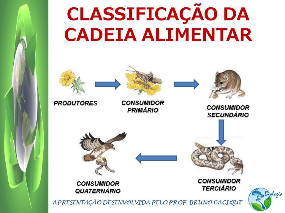 CLASSIFICAÇÃO DA CADEIA ALIMENTAR APRESENTAÇÃO DESENVOLVIDA PELO PROF. BRUNO CACIQUE PRODUTORES CONSUMIDOR SECUNDÁRIO CONSUMIDOR PRIMÁRIO CONSUMIDOR T
