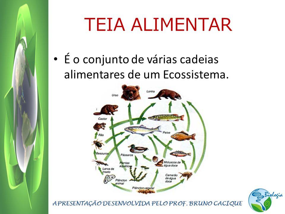 TEIA ALIMENTAR É o conjunto de várias cadeias alimentares de um Ecossistema. APRESENTAÇÃO DESENVOLVIDA PELO PROF. BRUNO CACIQUE
