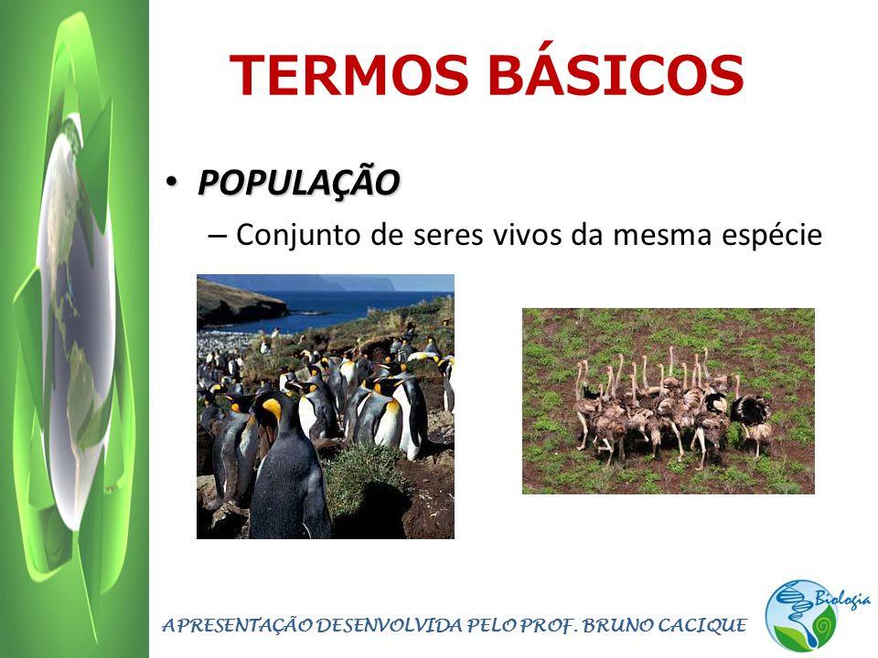 TERMOS BÁSICOS POPULAÇÃO POPULAÇÃO – Conjunto de seres vivos da mesma espécie APRESENTAÇÃO DESENVOLVIDA PELO PROF. BRUNO CACIQUE