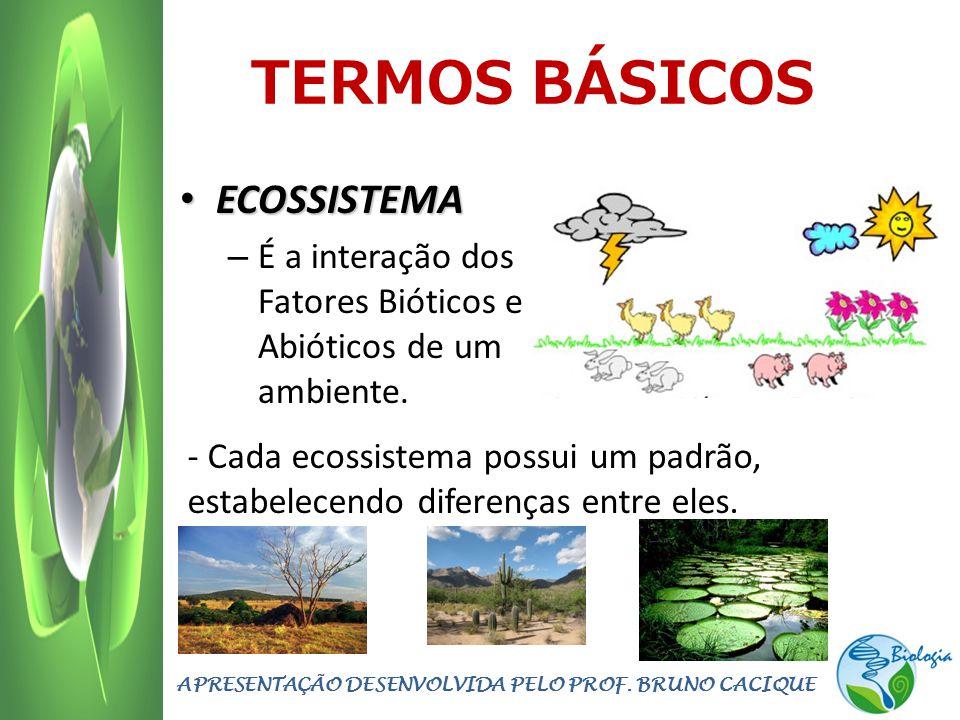 TERMOS BÁSICOS ECOSSISTEMA ECOSSISTEMA – É a interação dos Fatores Bióticos e Abióticos de um ambiente. APRESENTAÇÃO DESENVOLVIDA PELO PROF. BRUNO CAC