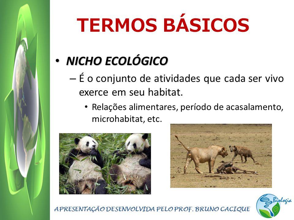 TERMOS BÁSICOS NICHO ECOLÓGICO NICHO ECOLÓGICO – É o conjunto de atividades que cada ser vivo exerce em seu habitat. Relações alimentares, período de
