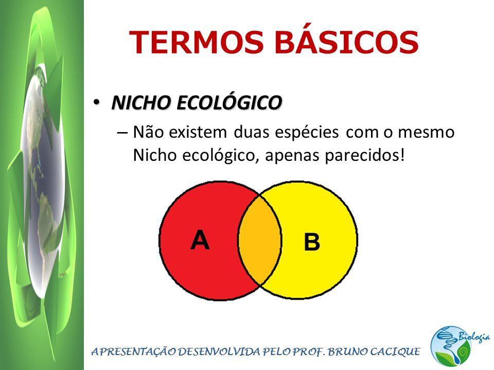 TERMOS BÁSICOS NICHO ECOLÓGICO NICHO ECOLÓGICO – Não existem duas espécies com o mesmo Nicho ecológico, apenas parecidos! APRESENTAÇÃO DESENVOLVIDA PE