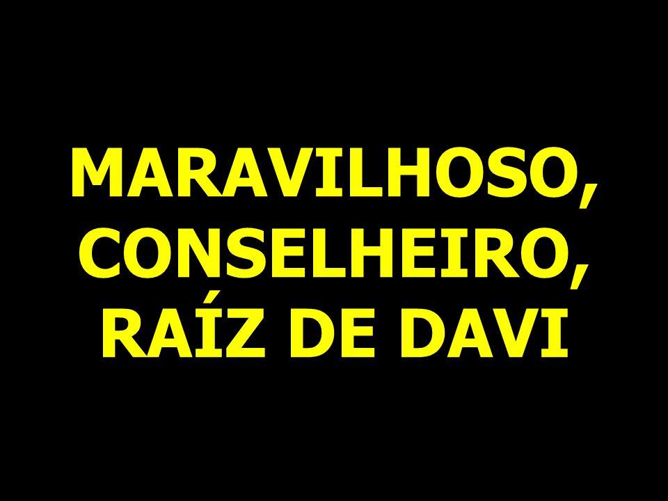 MARAVILHOSO, CONSELHEIRO, RAÍZ DE DAVI