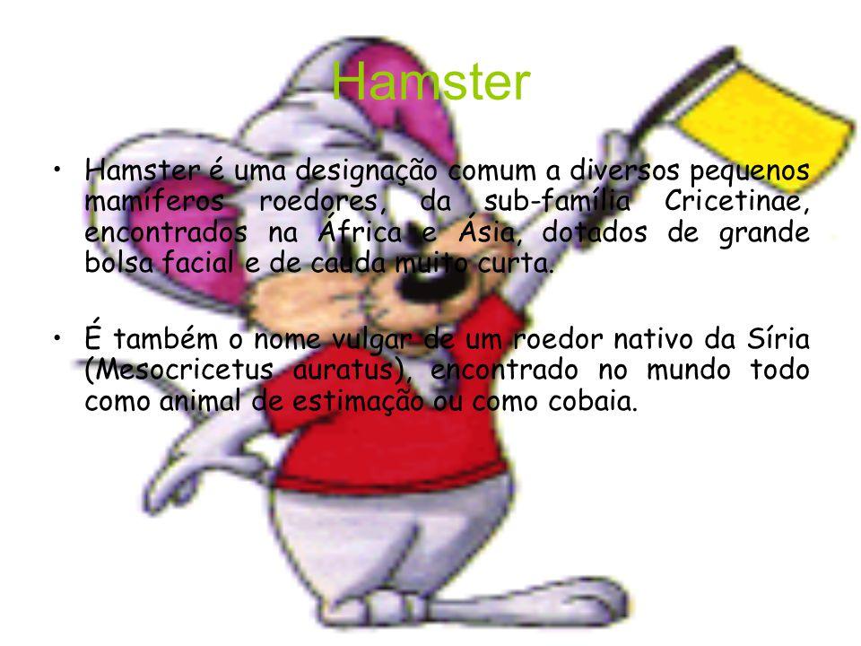 Hamster Hamster é uma designação comum a diversos pequenos mamíferos roedores, da sub-família Cricetinae, encontrados na África e Ásia, dotados de grande bolsa facial e de cauda muito curta.