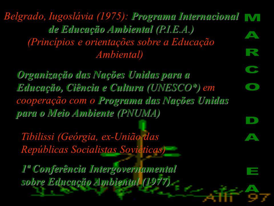 """Brasil  """"milagre econômico""""  """"a poluição é o preço que se paga pelo progresso"""". O.N.U  1972 O.N.U  1972 Primeira Conferência Mundial sobre Meio Am"""