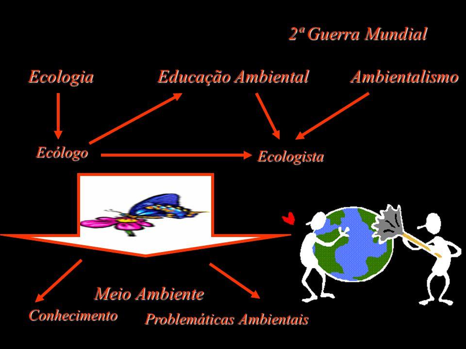 2ª Guerra Mundial Ecologia Educação Ambiental Ambientalismo Ecólogo Ecologista Meio Ambiente Conhecimento Problemáticas Ambientais