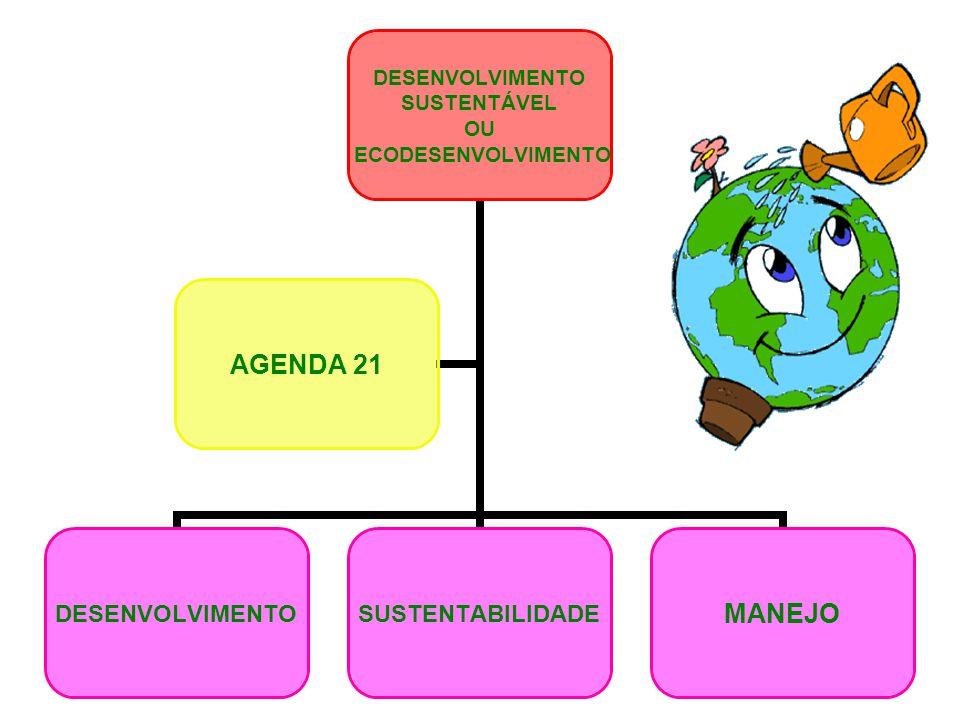 DESENVOLVIMENTO SUSTENTÁVEL OU ECODESENVOLVIMENTO DESENVOLVIMENTOSUSTENTABILIDADEMANEJO AGENDA 21