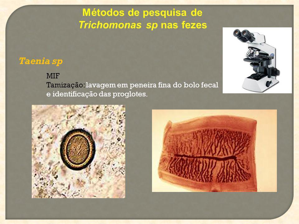 Taenia sp Métodos de pesquisa de Trichomonas sp nas fezes MIF Tamização: lavagem em peneira fina do bolo fecal e identificação das proglotes.