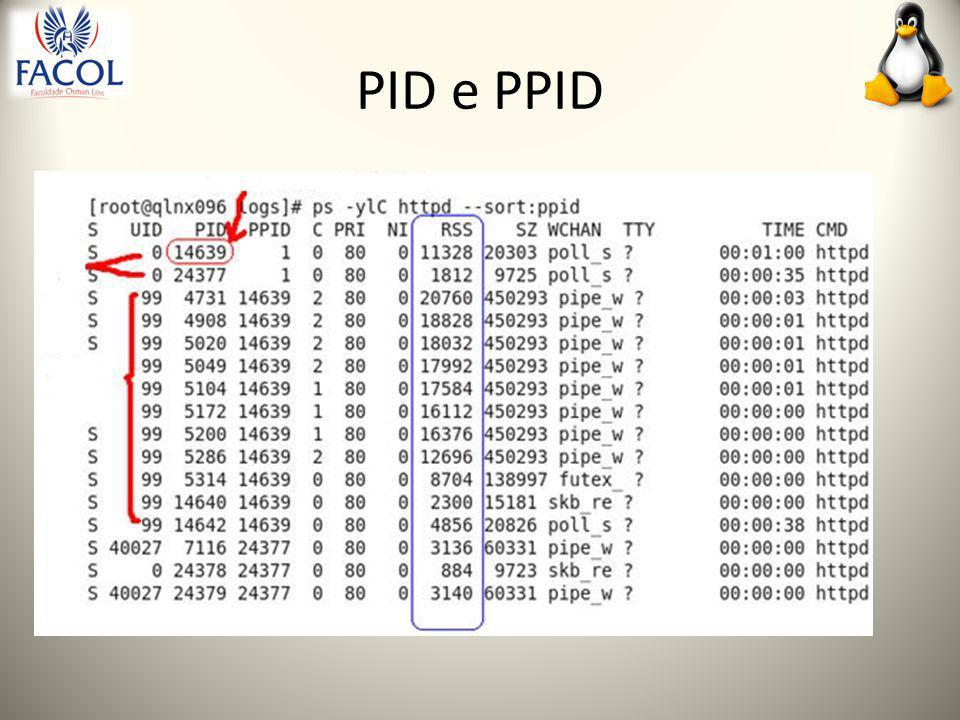 PID e PPID