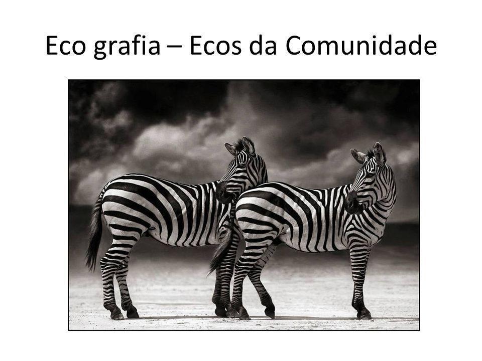Eco grafia – Ecos da Comunidade