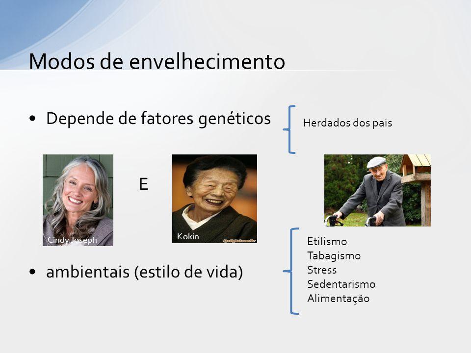 Depende de fatores genéticos E ambientais (estilo de vida) Modos de envelhecimento Etilismo Tabagismo Stress Sedentarismo Alimentação Herdados dos pais Cindy Joseph Kokin