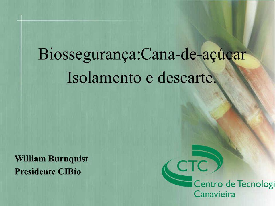 Título da Apresentação Autor Biossegurança:Cana-de-açúcar Isolamento e descarte. William Burnquist Presidente CIBio