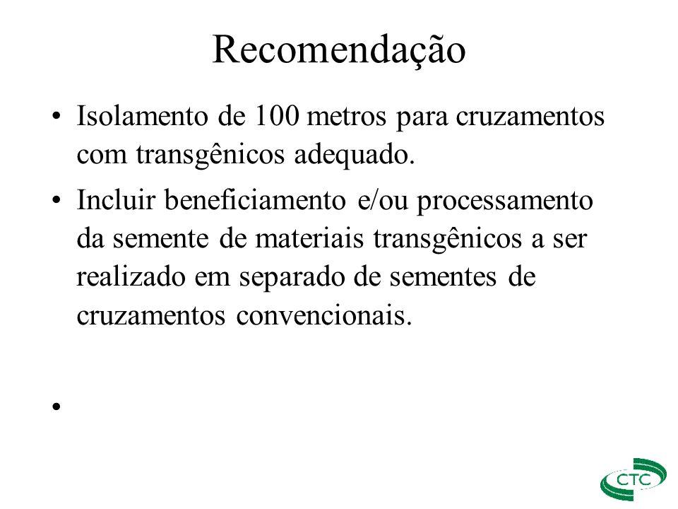 Isolamento de 100 metros para cruzamentos com transgênicos adequado. Incluir beneficiamento e/ou processamento da semente de materiais transgênicos a