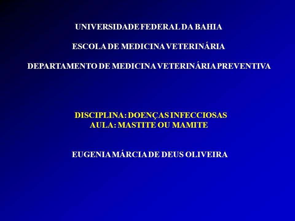 UNIVERSIDADE FEDERAL DA BAHIA ESCOLA DE MEDICINA VETERINÁRIA DEPARTAMENTO DE MEDICINA VETERINÁRIA PREVENTIVA DISCIPLINA: DOENÇAS INFECCIOSAS AULA: MASTITE OU MAMITE EUGENIA MÁRCIA DE DEUS OLIVEIRA