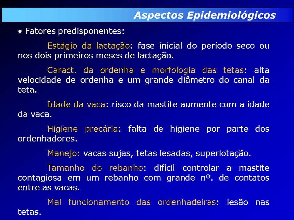 Aspectos Epidemiológicos Fatores predisponentes: Estágio da lactação: fase inicial do período seco ou nos dois primeiros meses de lactação.
