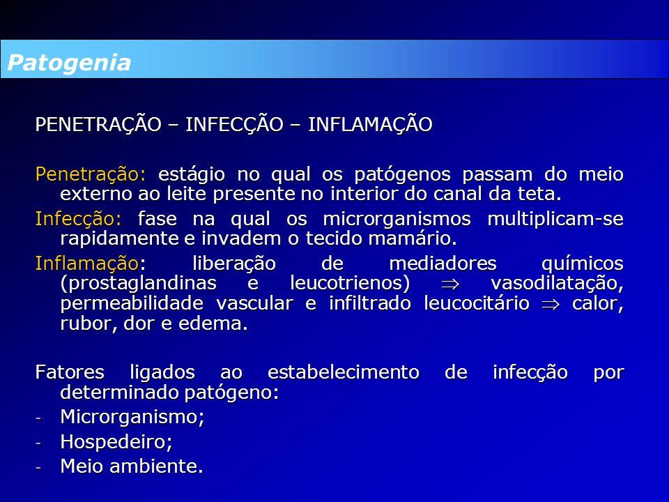 PENETRAÇÃO – INFECÇÃO – INFLAMAÇÃO Penetração: estágio no qual os patógenos passam do meio externo ao leite presente no interior do canal da teta.