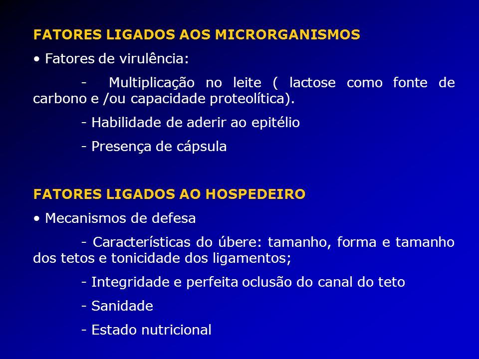 FATORES LIGADOS AOS MICRORGANISMOS Fatores de virulência: - Multiplicação no leite ( lactose como fonte de carbono e /ou capacidade proteolítica).