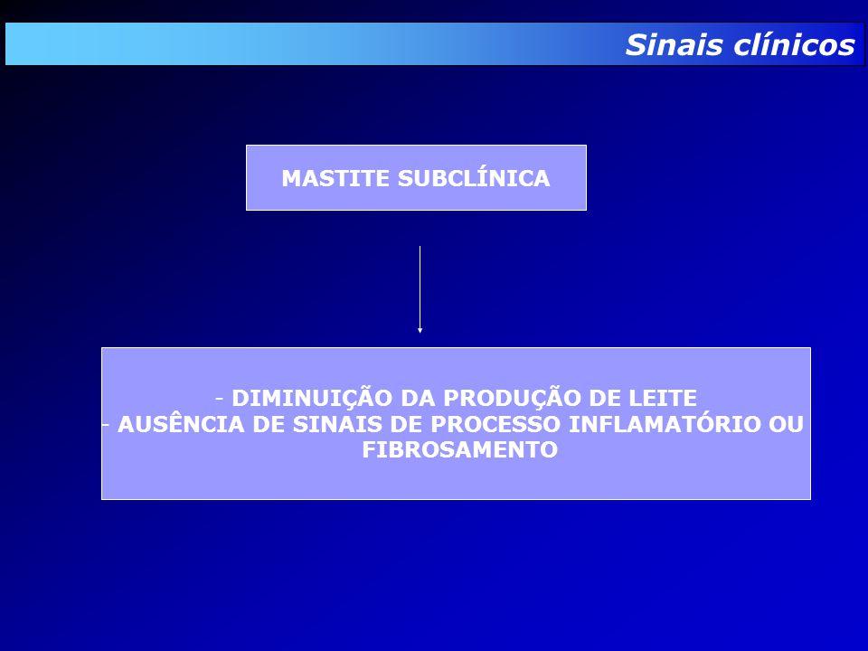 Sinais clínicos MASTITE SUBCLÍNICA - DIMINUIÇÃO DA PRODUÇÃO DE LEITE - AUSÊNCIA DE SINAIS DE PROCESSO INFLAMATÓRIO OU FIBROSAMENTO