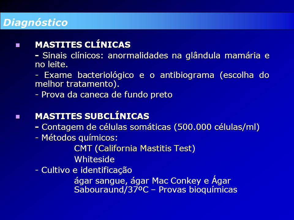 MASTITES CLÍNICAS MASTITES CLÍNICAS - Sinais clínicos: anormalidades na glândula mamária e no leite.