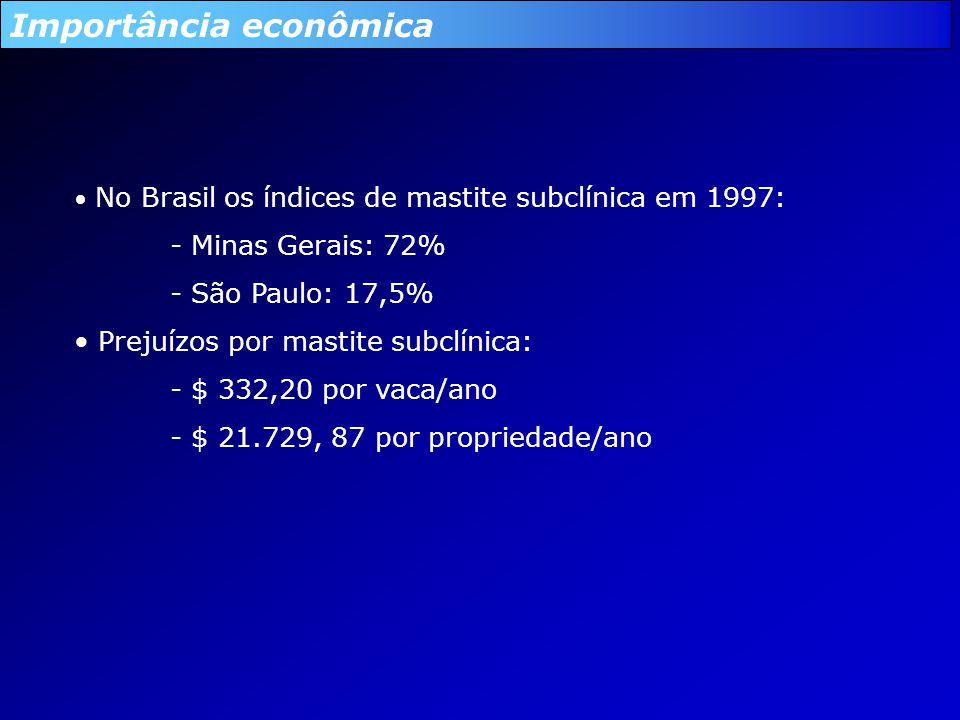 Importância econômica No Brasil os índices de mastite subclínica em 1997: - Minas Gerais: 72% - São Paulo: 17,5% Prejuízos por mastite subclínica: - $ 332,20 por vaca/ano - $ 21.729, 87 por propriedade/ano