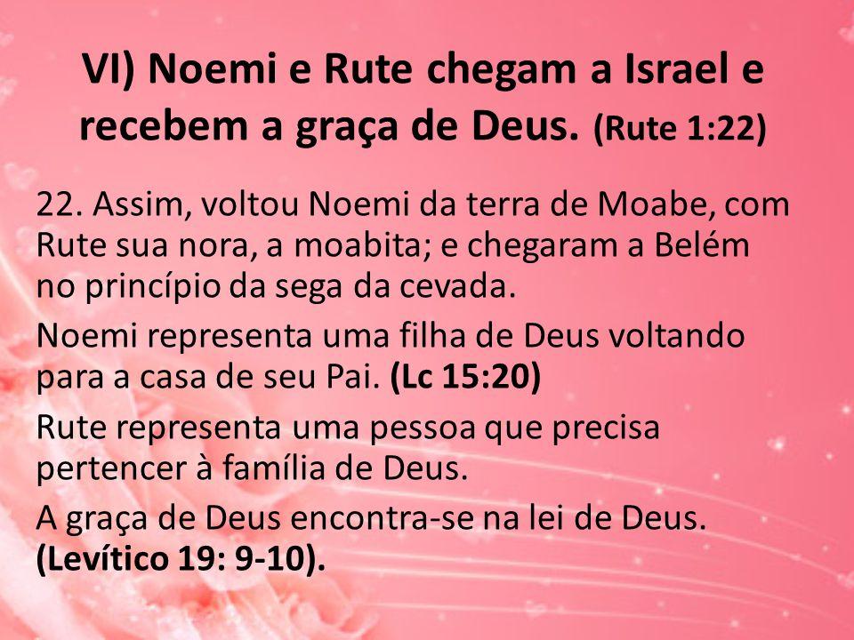 VI) Noemi e Rute chegam a Israel e recebem a graça de Deus. (Rute 1:22) 22. Assim, voltou Noemi da terra de Moabe, com Rute sua nora, a moabita; e che