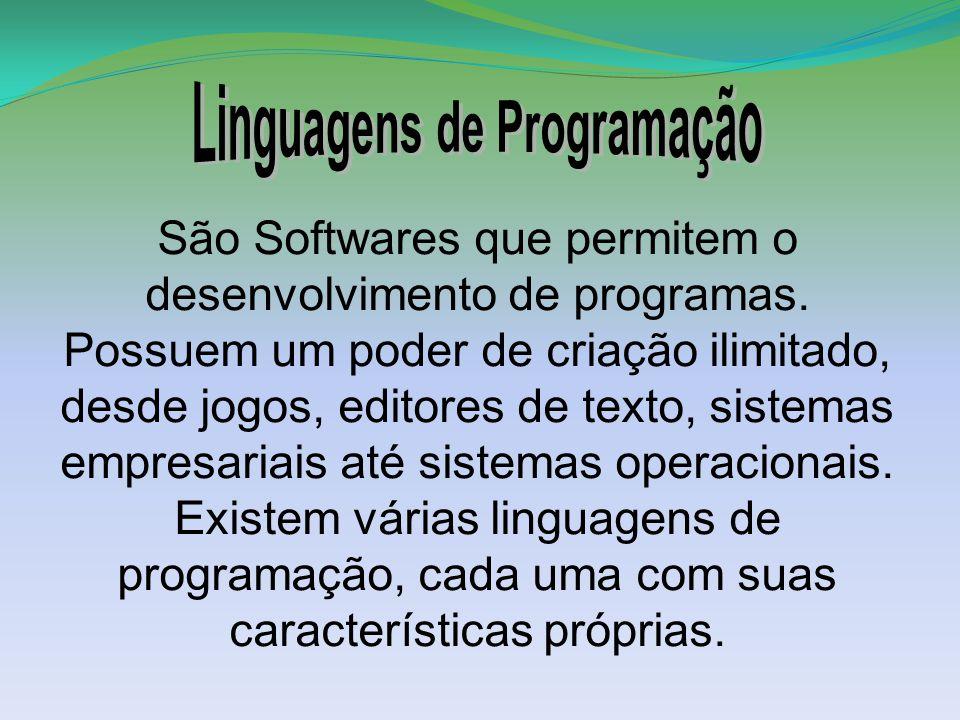 São Softwares que permitem o desenvolvimento de programas.