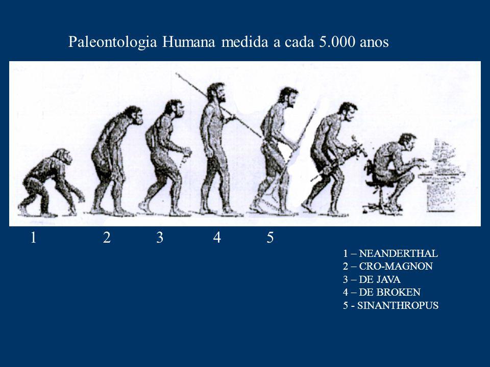 Paleontologia Humana medida a cada 5.000 anos 1 2 3 4 5 1 – NEANDERTHAL 2 – CRO-MAGNON 3 – DE JAVA 4 – DE BROKEN 5 - SINANTHROPUS