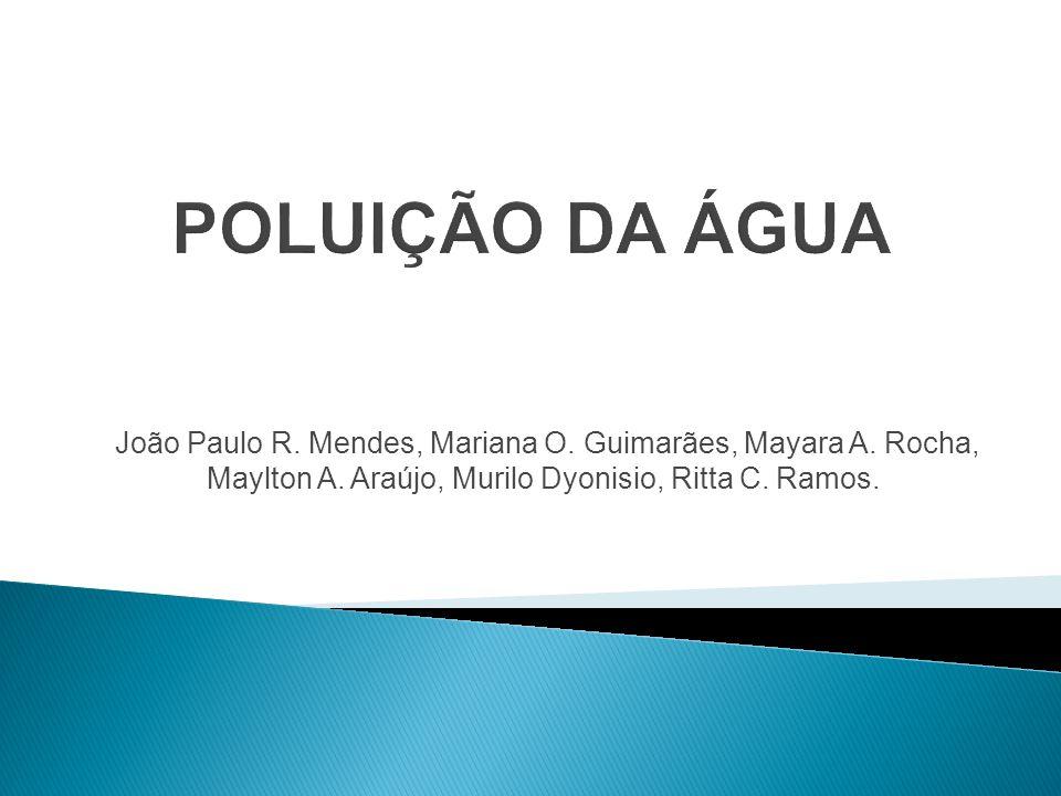 João Paulo R. Mendes, Mariana O. Guimarães, Mayara A. Rocha, Maylton A. Araújo, Murilo Dyonisio, Ritta C. Ramos.