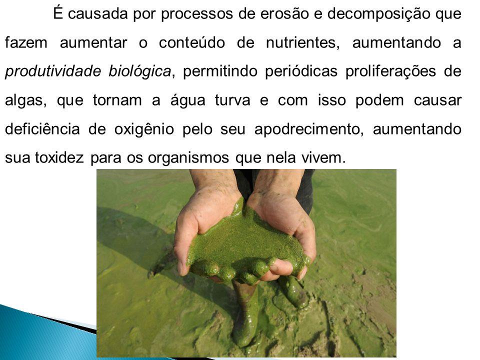 É causada por processos de erosão e decomposição que fazem aumentar o conteúdo de nutrientes, aumentando a produtividade biológica, permitindo periódi