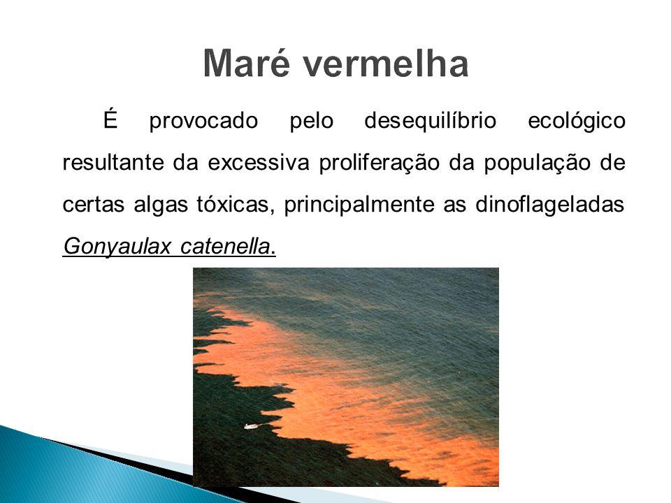 É provocado pelo desequilíbrio ecológico resultante da excessiva proliferação da população de certas algas tóxicas, principalmente as dinoflageladas G